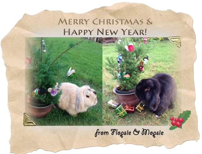 Rabbits-Christmas-2014-frame
